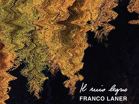 Una dichiarazione d'amore per il legno nelle pagine del professor Franco Laner